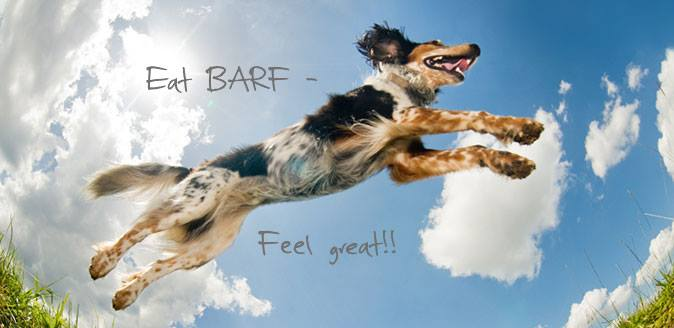 PHOTO EAT BARF FEEL GREAT