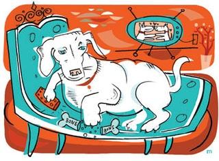 dog overweight1