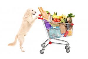drydog food4