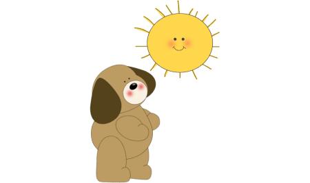 Ο ζωοδότης Ήλιος λείπει από τα σκυλιά των πόλεων