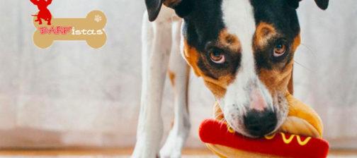 Junk Food τα δημητριακά για το σκύλο